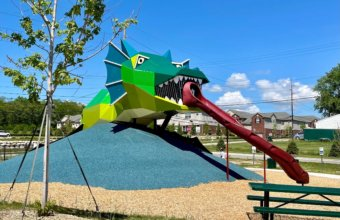 Check Out The New Dragon Playground In Orion Township