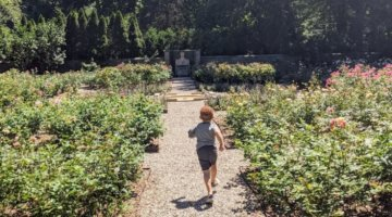 Plan The Perfect Family Day At The Ford House