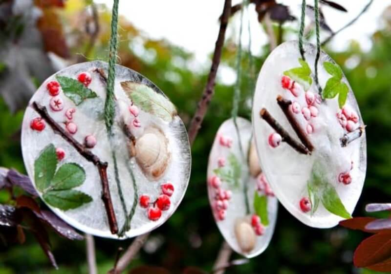 Holiday Ornaments From Nature